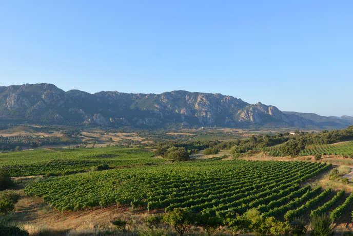 Le domaine de Saparale, sur la commune de Sartène, dans l'extrême sud de la Corse.