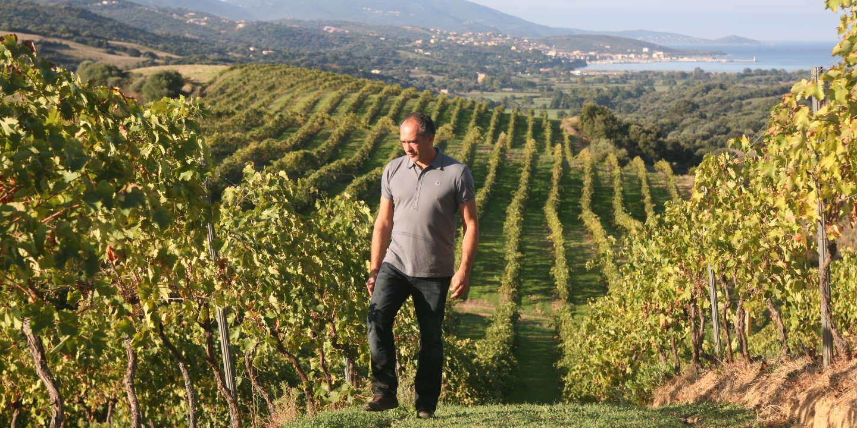 Gilles Seroin, vigneron de la nouvelle vague corse