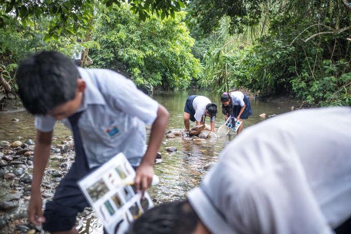 Des collégiensparticipent au programme «Les gardiens de l'eau» mené par le Cincia en récoltant des petits invertébrés aquatiques. Certains sont enfants de mineurs d'or illégaux.