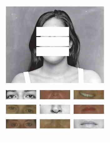 «Sur cette image c'est l'artiste elle-même qui est représentée. Alba Zarine connait pas son père biologique. Dans l'exposition on peut découvrir des fragments de sa longue enquête aidée par la relecture des images d'archives familiales, par la physiognomonie et par la création d'avatars pour combler ce manque.»