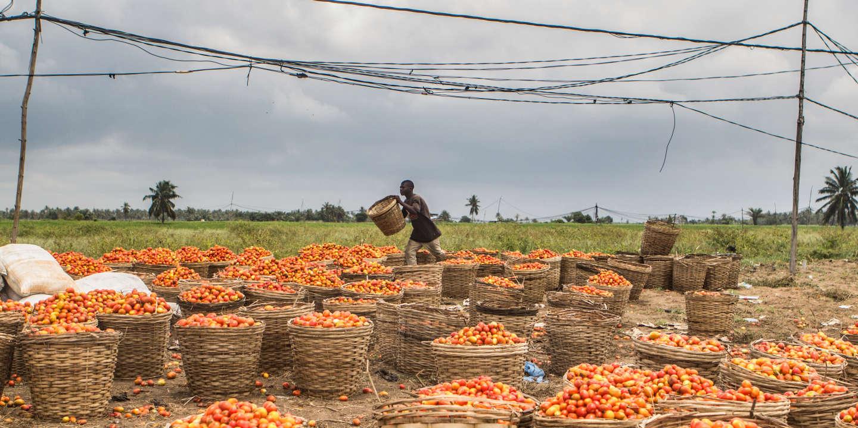 Dans les pays pauvres, le versement de l'aide au développement coïncide avec des transferts de fonds vers les paradis fiscaux