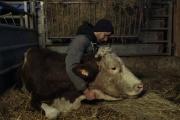 Cyrille réveille ses vaches tous les matins à 6 heures, et les appelle par leur prénom.