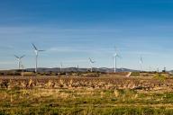 Des éoliennes de l'Ensemble éolien catalan, installé par EDF en2016, à Pézilla-la-Rivière, le 21 février.