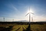 Les éoliennes de l'Ecoparc Catalan, à Pézilla-la-Rivière, dans les Pyrénées-Orientales, le 22 février.
