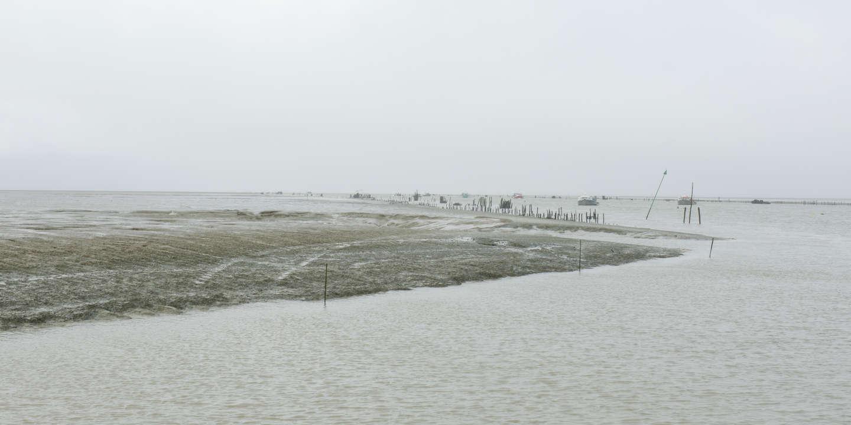 Lundi 24 février 2020, Charron, Nouvelle Aquitaine. Vue sur le port du pavé, et les activités des mytiliculteurs, 10 ans après la tempête Xynthia.