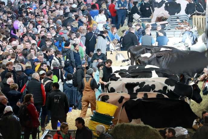 Dans les allées duSalon international de l'agriculture, au Parc des expositions, porte de Versailles, à Paris, le 22février.