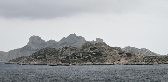 « Cette condamnation est un signal très fort, avec une vocation pédagogique pour tous les acteurs à Marseille », s'est félicité l'avocat du Parc national des calanques.
