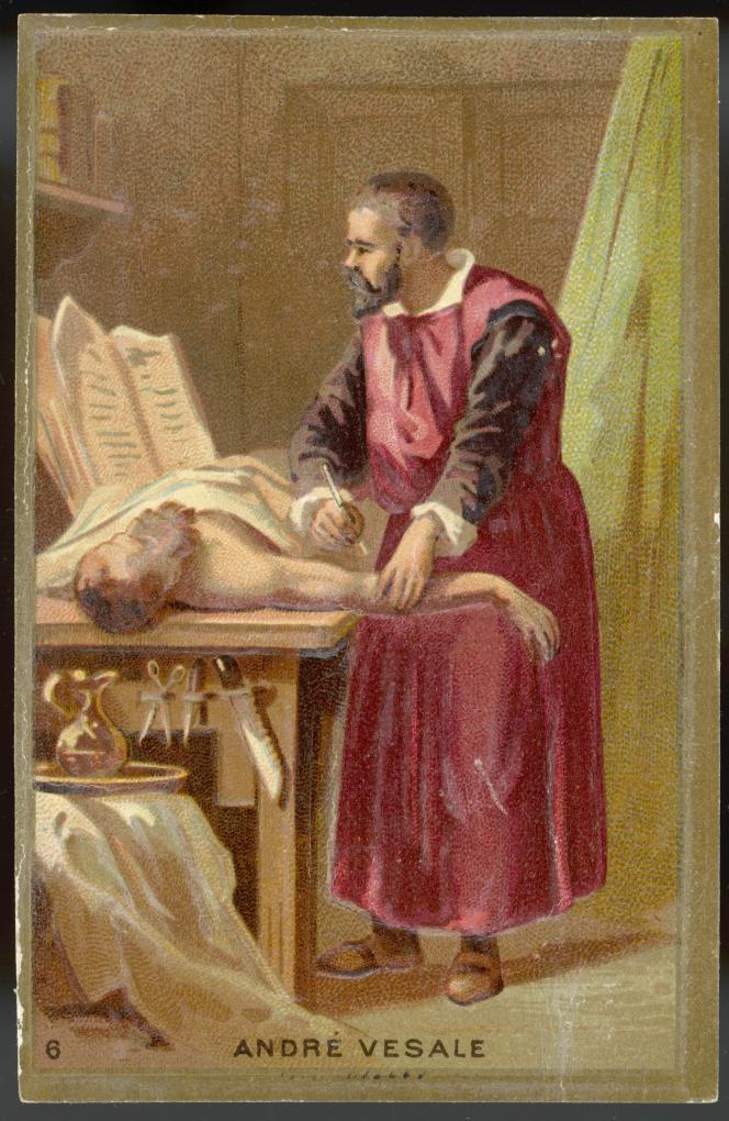 L'anatomiste de la Renaissance André Vésale.