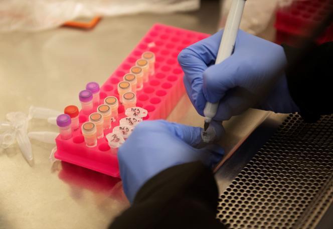 Expérimentation de l'hydroxychloroquine avec des échantillons prélevés sur des patients atteints du Covid-19, à Minneapolis (Minnesota), le 19 mars.