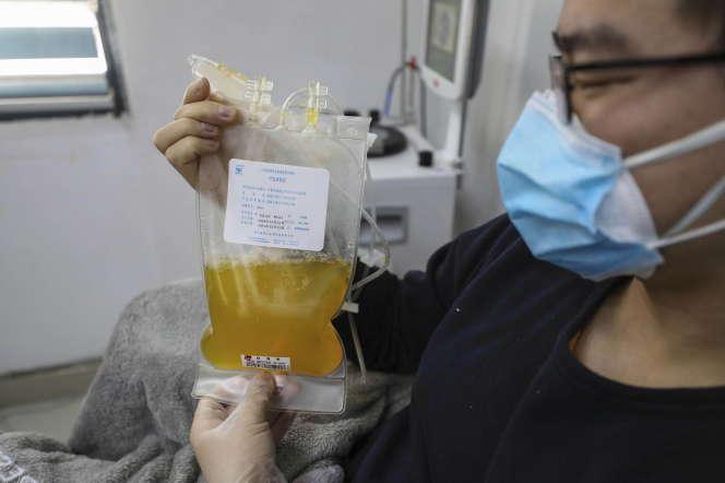 Echantillon de plasma sanguin prélevé chez un convalescent du Covid-19, à Wuhan (Chine), le 18février.