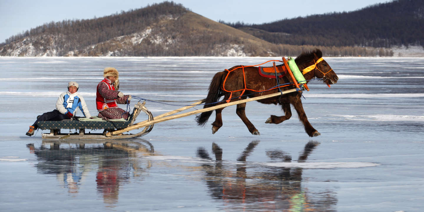 A horse pulls a sled during a winter competition as part of the annual two-day Ice Festival on Khuvsgul Lake March 3, 2015. Picture taken March 3, 2015. REUTERS/B.Rentsendor (MONGOLIA - Tags: TRAVEL SOCIETY ANIMALS) - GM1EB35175X01