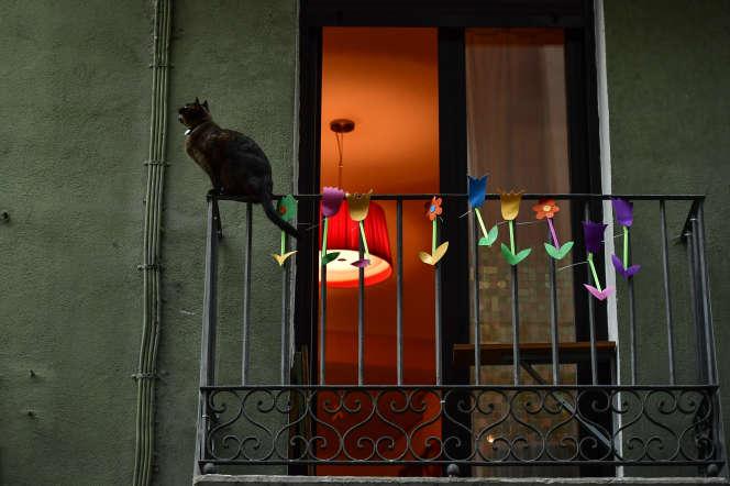 Un chat sur un balcon, le 2 avril àPampelune, en Espagne.