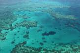 En Australie, la Grande Barrière de corail victime de l'été austral