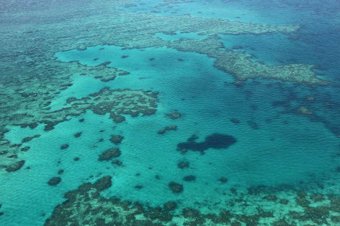 La Grande Barrière de corail dans l'Etat austalien du Queensland, en 2014.