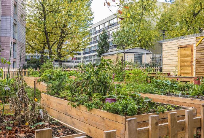 «La multiplication des interactions à haut risque entre la ville et la nature devrait nous inciter à faire preuve de plus de discernement.» Photo : Un espace jardinage dans un ensemble de logements sociaux dans le13ème arrondissement de Paris