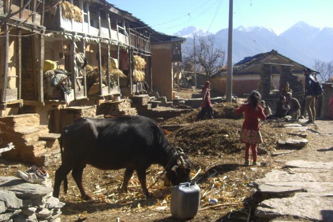 Un village népalais, en 2019.