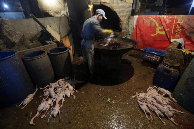 Un vendeur de canards dans un marché de Wuhan (Chine), le 6 avril 2013.