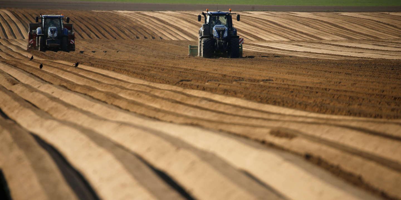 Epandage de pesticides: le confinement ravive les tensions entre agriculteurs et riverains