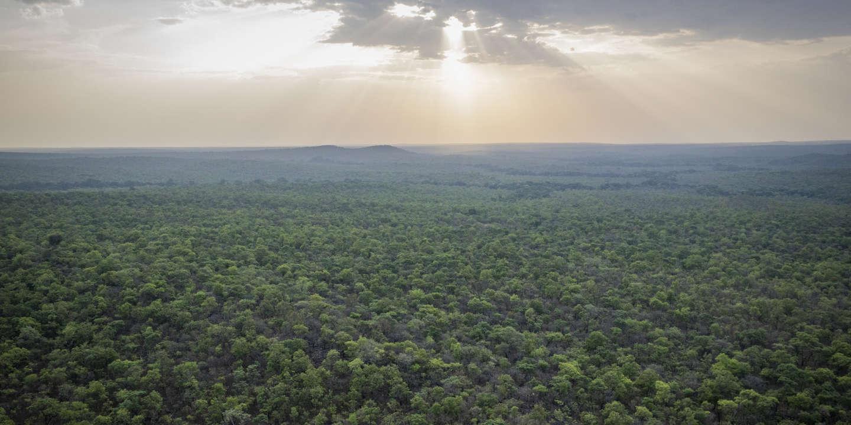 Au cœur de l'Afrique, la guerre au nom de la nature