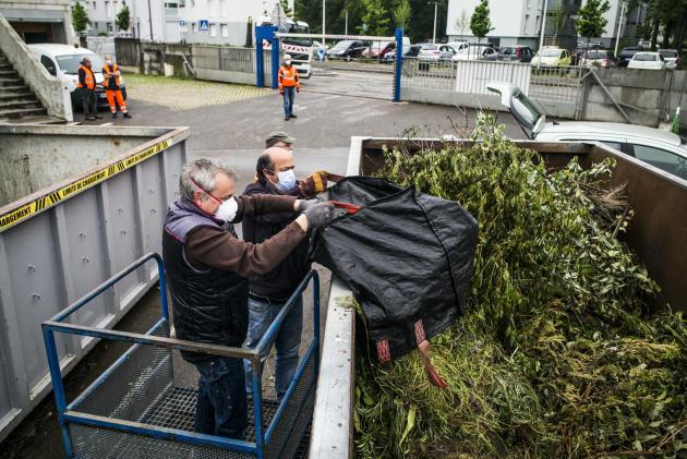 Après près dehuit semaines de fermeture, les quinze déchetteries de l'agglomération mulhousienne ont rouvert ce matin, lundi, pour permettre aux habitants d'y déposer leurs déchets verts.