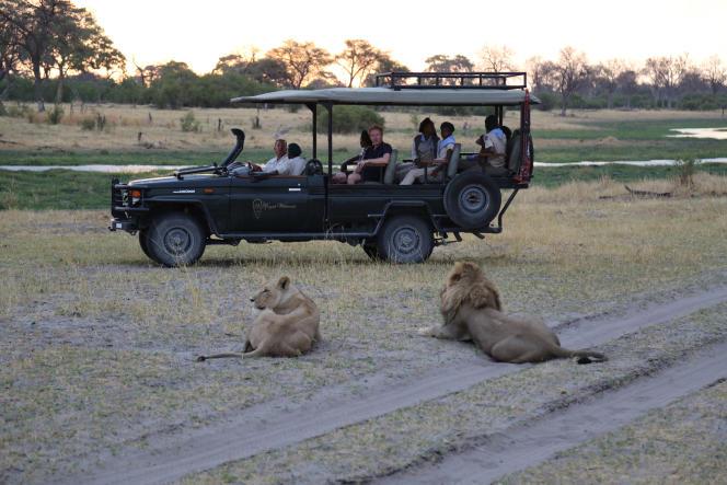Jérôme Pitorin fait un safari au Botswana, dans «Echappées belles», sur France 5.