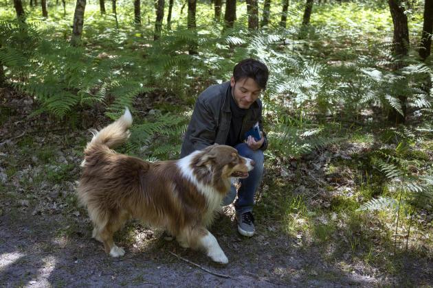 Sebastien et son chien Nabucco se promènent avec des amis dans la forêt de Fontainebleau, le 17 mai.