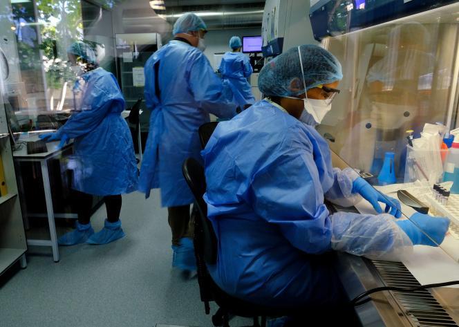Essais sur le vaccin BCG dans un laboratoire de l'entreprise Task, au Cap, en Afrique du Sud, le 11 mai.
