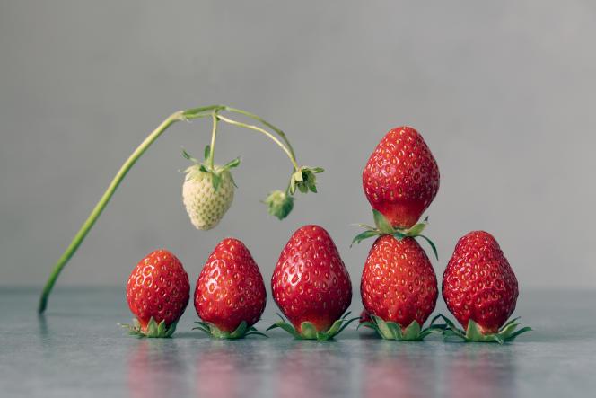 Des fraises.