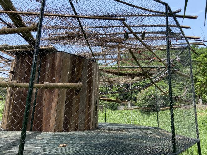 La volière duLimbe Wildlife Center, en mai 2020.