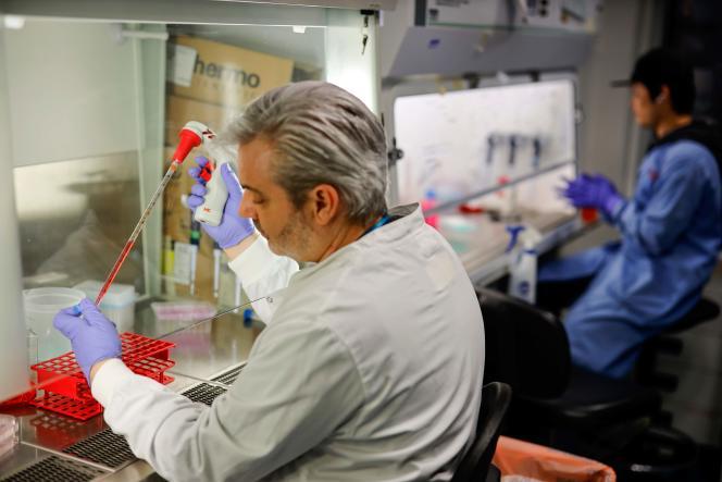 Un professeur de l'Imperial College de Londres travaillant sur un vaccin contre le coronavirus, le 10 février.