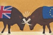 « La position de l'Union, si elle reste solide tant que les Vingt-Sept sont unis, n'est pas complètement assurée.»