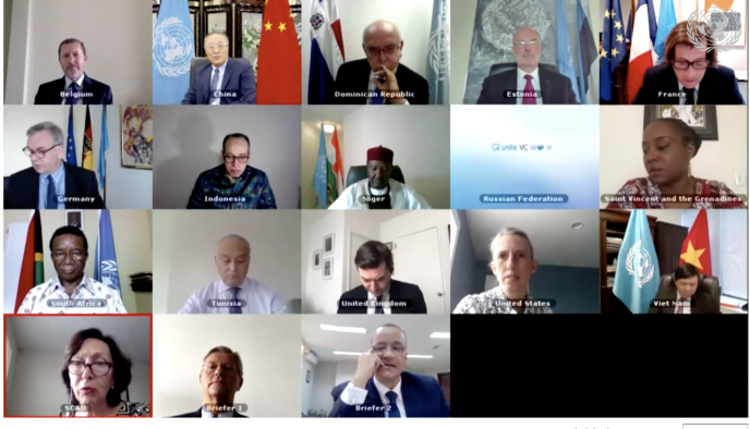 Le Conseil de sécurité de l'ONU, sur le G5 Sahel, s'est tenu virtuellement, le 5 juin.