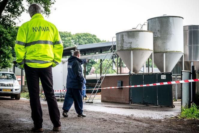 La ferme d'élevage de Deurneest visée, le 6 juin 2020,par un ordre d'abattage des 1500 visons qu'elle abrite, après que des cas de Covid-19 y ont été détectés.