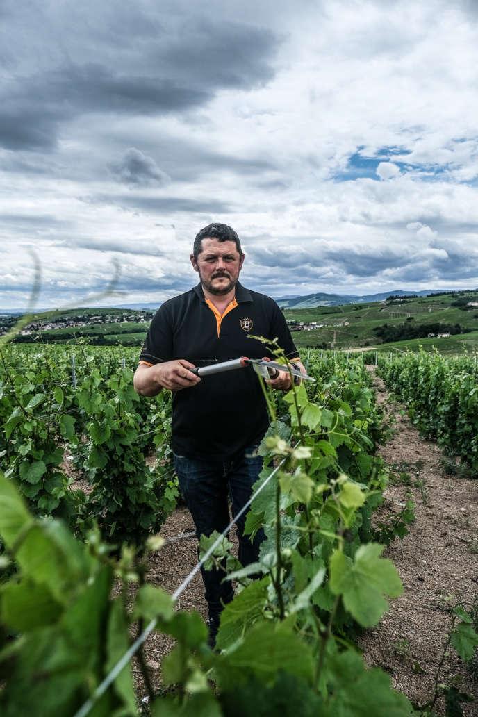 Le viticulteur Christophe Savoye sur son exploitation, le 6juin 2020.