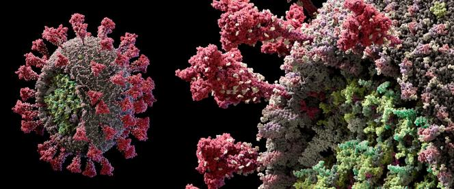 Modèle du virus SARS-CoV-2 en 3D, proposé par le studio Visual Science,le 11 mai.