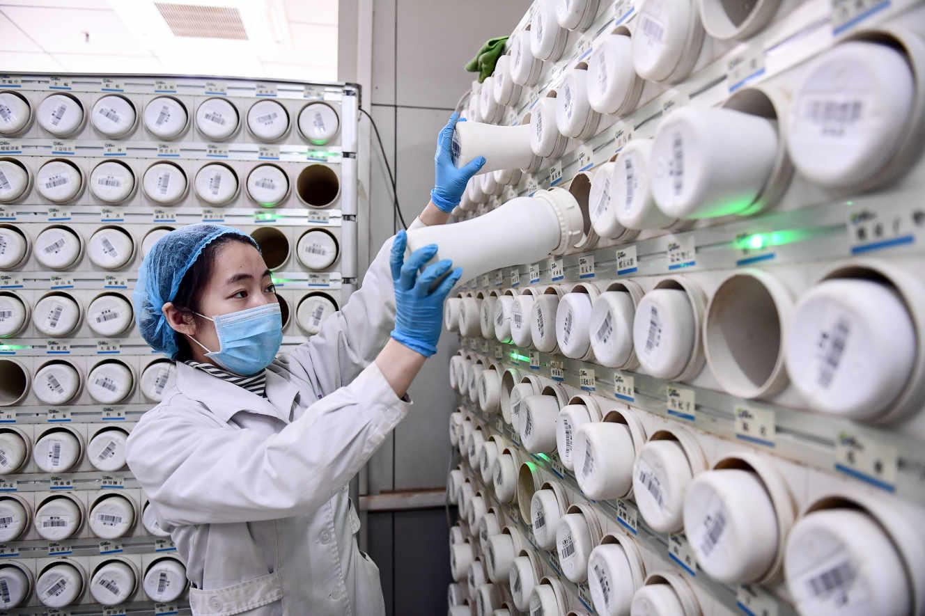 um trabalhador médico produz um composto de medicina tradicional chinesa, no Shenyang Hospital (China), 20 de fevereiro.