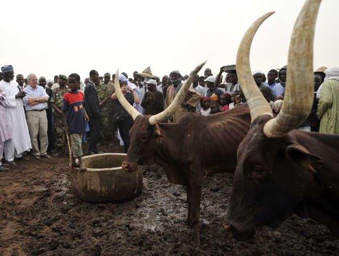 Rassemblement d'éleveurs à Zinder, au Niger, en avril 2010.
