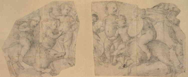 """«De jeunes enfants ou """"putti"""" montés sur des sangliers participent à une joute de fantaisie. Leurs ventres bombés, leurs mentons en galoche, leurs hauts fronts, leurs cheveux bouclés trouvent leurs équivalents chez le Pérugin ou Pinturicchio. Le jeune Raphaël les a dessinés vers 1502-1504, alors qu'il était sous l'influence de ces maîtres ombriens. Il affirme ici une ligne claire et maîtrisée, et crée une composition habile et dynamique. Ce carton fragmentaire piqué pour le report pourrait préparer une fresque ou une tapisserie. »"""