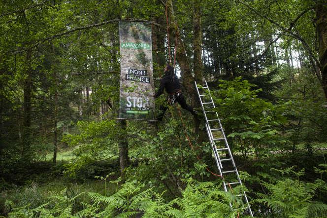 Des membres des associations Canopée, SOS Forêt Bourgogne et Adret Morvan installent des banderoles contre les coupes rases, le 4 juin.