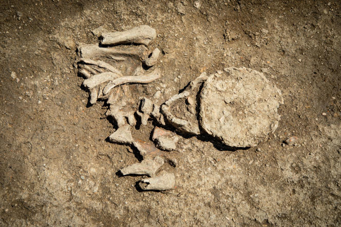 Une des sépultures mise au jour par l'équipe de l'Institut national de recherches archéologiques préventives (Inrap), dans la nécropole proche de l'église paléochrétienne de Saint-Pierre-l'Etrier, à Autun (Saône-et-Loire).