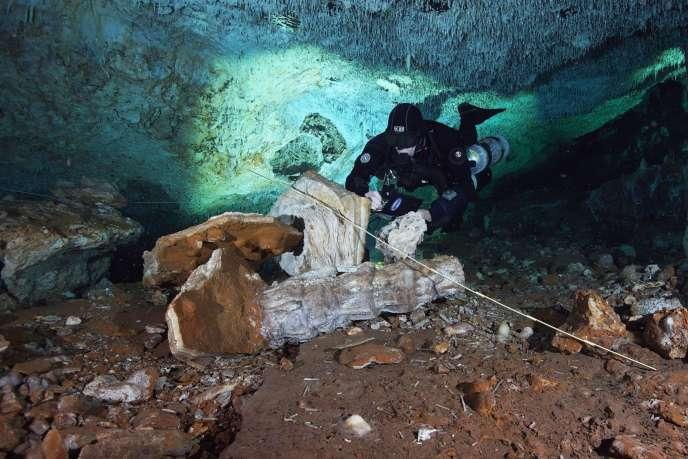 Les plongeurs du Cindaq ont exploré les grottes sous-marines dans la péninsule du Yucatan.