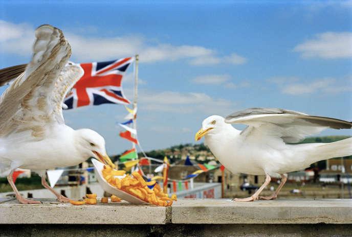 «Think of England - Westbay, England» (1996).