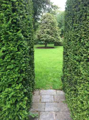 Les haies d'if taillé conduisent le regard vers une partie du jardin ainsi mise en valeur.