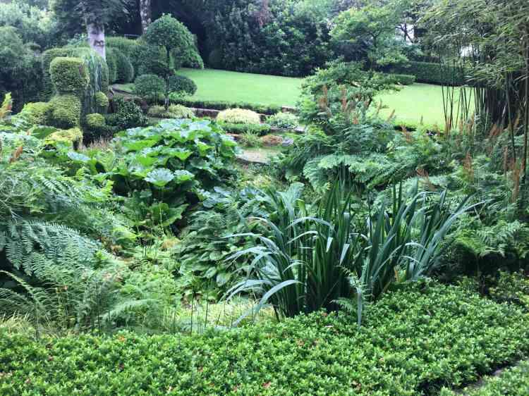 Couvre-sol, fougères, plantes de milieu humide, topiaires, arbre taillé en nuages et gazon composent une scène végétale du plus bel effet.