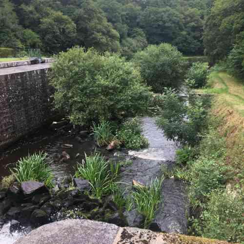 Cette partie du canal,« jardinée», est parallèle à l'une des deux écluses du site.