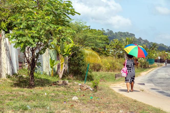 En bordure de la zone de mangroves où pourrait être construite la nouvelle centrale au fuel, à Matoury près de Cayenne (Guyane), en octobre 2018.