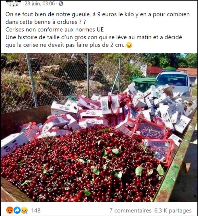Capture d'écran d'un message qui prétend que l'Union européenne interdit de vendre des cerises de plus de 2 cm.