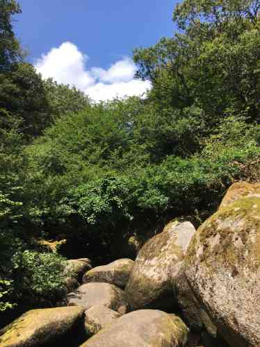 L'amas rocheux de Toul-Goulic est constitué de blocs granitiques en partie recouverts de mousse, sculptés pendant des millions d'années par l'érosion due au cours impétueux du Blavet, un fleuve côtier breton.