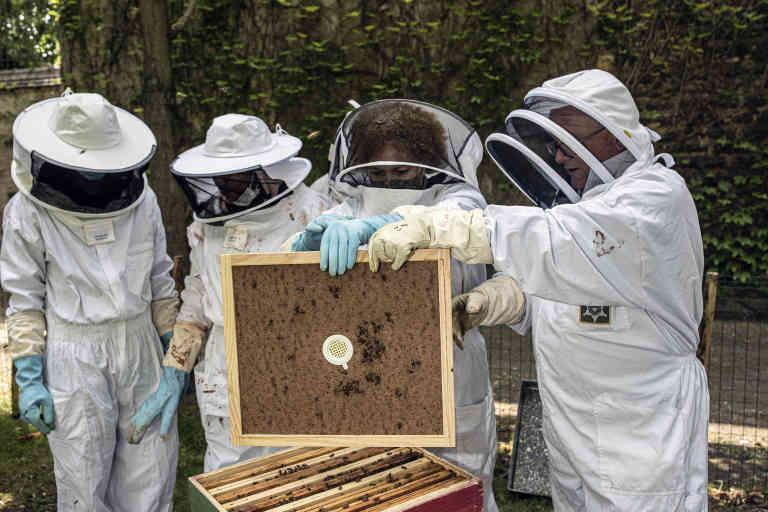 """Paris Juin 2020 - """"Société centrale d'apiculture"""