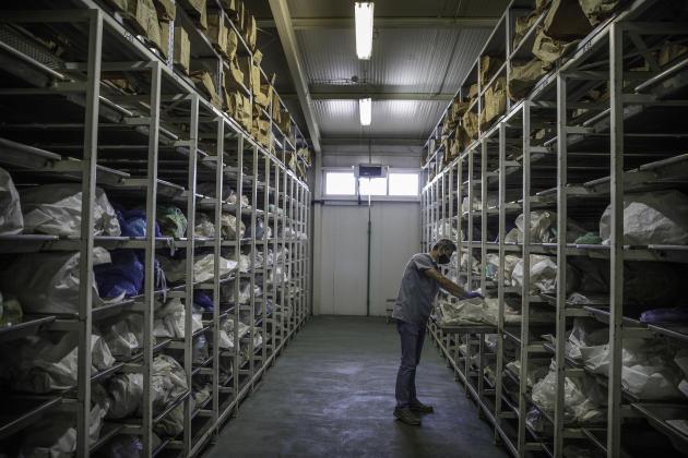 Dans un hangar de la Commission internationale des personnes disparues, des ossements sont en attente de leur identification.
